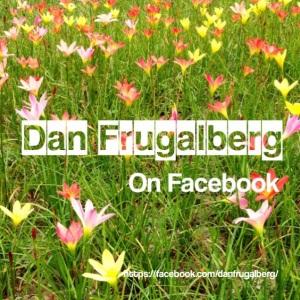DF Facebook